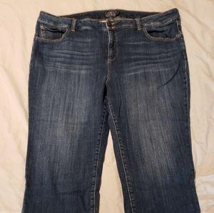 Lucky Brand Jean's 20w